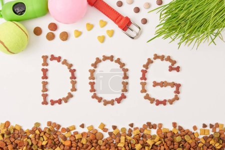 flat lay with lettering dog made by pet food near grass, balls and dog collar on white surface
