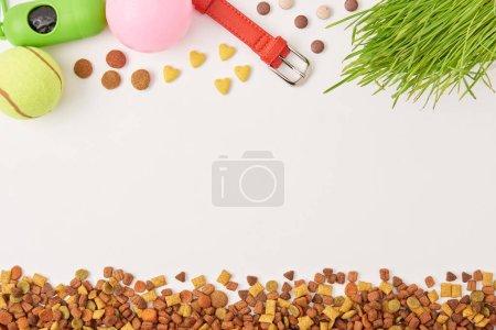 vue surélevée des boules disposées, collier de chien et pile de nourriture pour animaux de compagnie sur la surface blanche