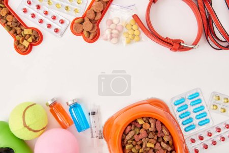 flat lay with dog collar, various pills, balls and bowl with dog food on white surface