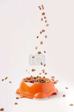 selective focus of granules falling into plastic bowl with pet food on white