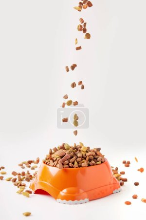 Photo pour Vue rapprochée des granules de nourriture pour chien tombant dans un bol en plastique avec de la nourriture pour animaux de compagnie sur blanc - image libre de droit