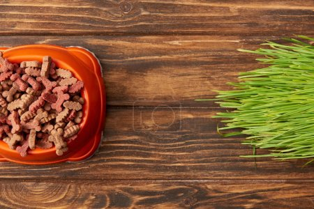 flat lay with arranged plastic bowl with pile of dog food near grass on wooden background