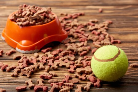 selective focus of plastic bowl with dog food and ball on wooden table