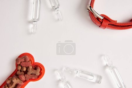 flat lay with dog collar, ampoules with medical liquid and plastic bone with dog food on white surface