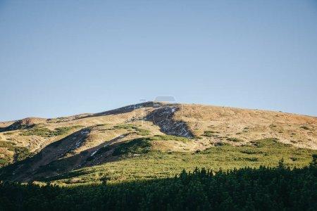 green mountains landscape, Carpathians, Ukraine
