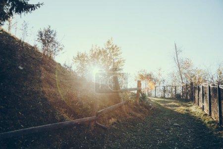Photo pour Sentier sur la colline sous le soleil dans les Carpates, en Ukraine - image libre de droit