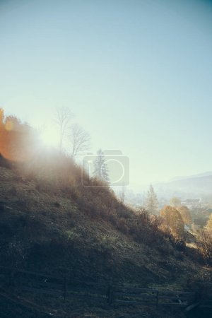 beautiful Carpathians and Vorokhta town on sunny day, Ukraine