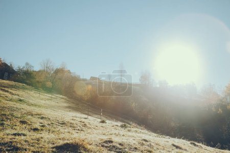 beautiful mountain pasture in Vorokhta on sunny day, Carpathians, Ukraine