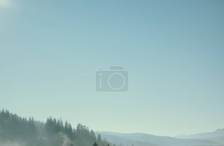 Photo for Hazy green mountain forest under blue sky, Carpathians, Ukraine - Royalty Free Image