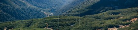 panoramic view of beautiful green mountains landscape, Carpathians, Ukraine