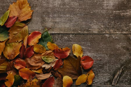 Photo for Flat lay with colorful fallen leaves on wooden surface - Royalty Free Image