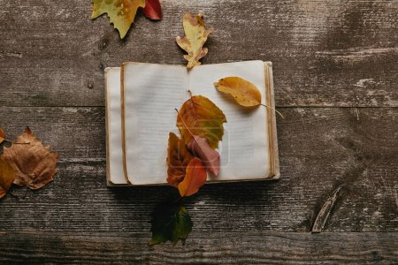 flat lay with fallen autumn leaves and blank notebook on wooden surface