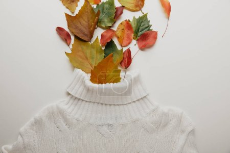 top view of white woolen sweater and fallen leaves arranged on white surface