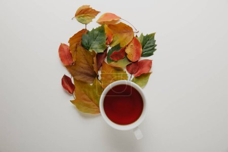 Photo for Flat lay with fallen leaves and cup of hot tea on white background - Royalty Free Image