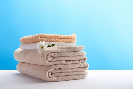 close-up view of stacked clean towels with white chamomile flower on blue