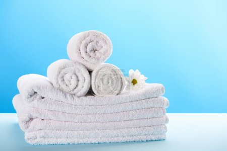 rolled and stacked towels with beautiful white chamomile flower on blue