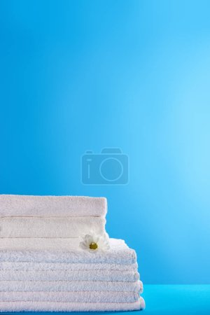 close-up view of stacked white clean towels and chamomile flower on blue background