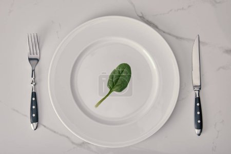 Photo for Empty plate with fork and knife with spinach leaf on white marble background, health and dieting concept - Royalty Free Image