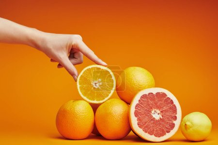 Photo for Cropped shot of human hand and fresh ripe citrus fruits on orange - Royalty Free Image