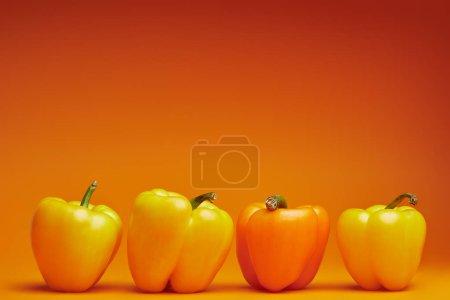 Photo pour Vue rapprochée des poivrons frais biologiques sur fond orange - image libre de droit