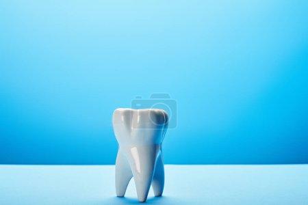 Photo pour Vue rapprochée du modèle de dent blanche sur fond bleu - image libre de droit