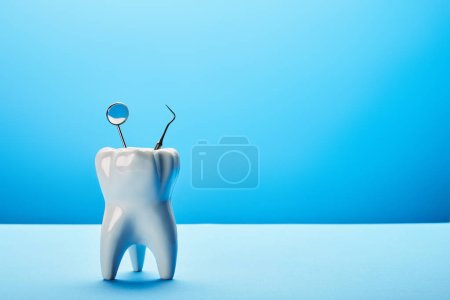 close up view of tooth model, dental mirror and probe on blue backdrop