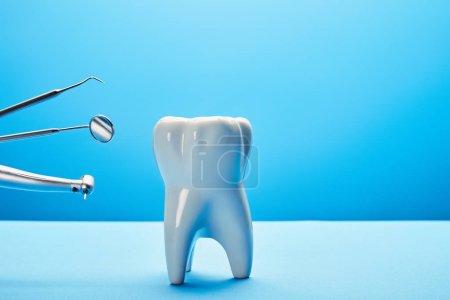 Photo pour Vue rapprochée du modèle de dent blanche et des instruments dentaires en acier inoxydable sur fond bleu - image libre de droit