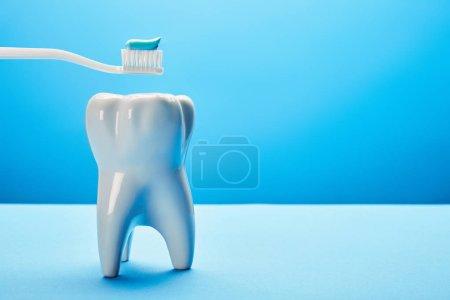 Photo pour Vue rapprochée du modèle de dent et de la brosse à dents avec pâte sur fond bleu, concept de soins dentaires - image libre de droit