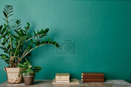 plants in flowerpots  and books on green background