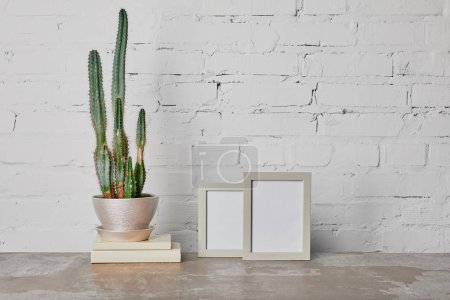 Photo for Cactus plant on books and photo frames on white brick wall background - Royalty Free Image