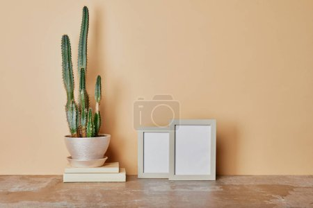 Photo for Cactus plant and photo frames on table on beige background - Royalty Free Image