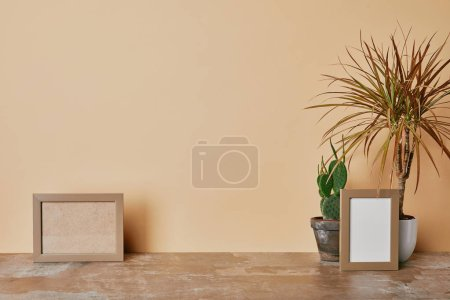 PPhoto frames  and different plants on table on beige background