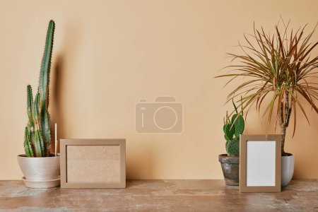 Photo for Empty photo frames and different plants on dusty table on beige background - Royalty Free Image