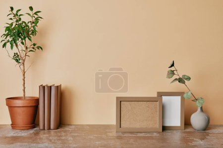 Plant, vase with flower, books and photo frames on beige background
