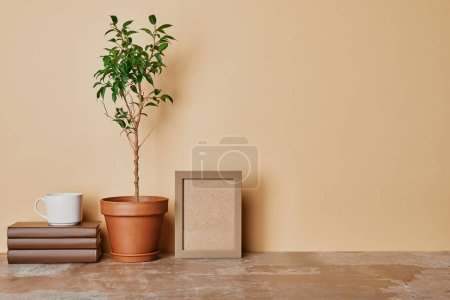 Plant in flowepot, books and photo frame on table on beige background