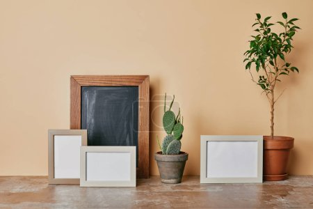 Different plants and photo frames on table on beige background