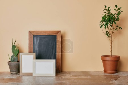 Plants and photo frames on dusty table on beige background