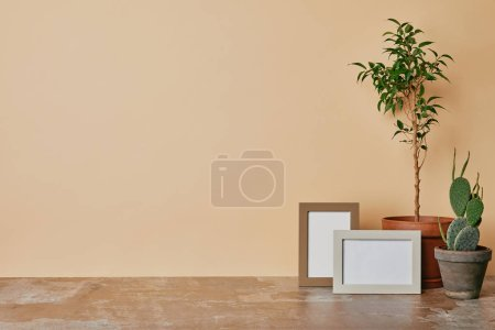 Plants and two photo frames on wooden table on beige background