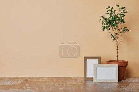 Pflanze und zwei Fotorahmen auf Tisch auf beigem Hintergrund