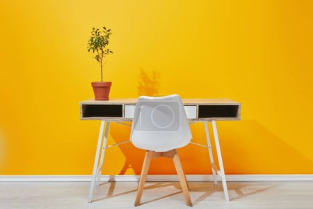 Plant in flowerpot at desk and chair near yellow wall