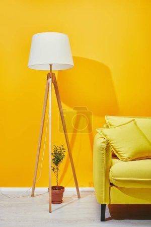 Sofa, Zimmerpflanze und Lampe in der Nähe der gelben Wand