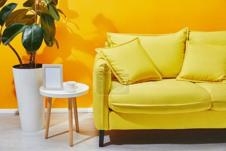 Sofa, ficus and little table with photo frame and cup of coffee near yellow wall