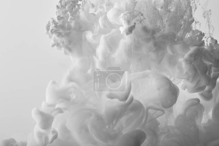abstract white swirls of paint on white background