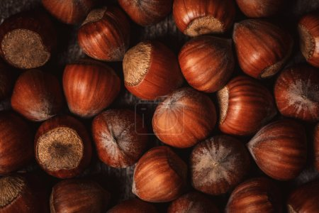 Photo for Full frame of shelled hazelnuts as backdrop - Royalty Free Image