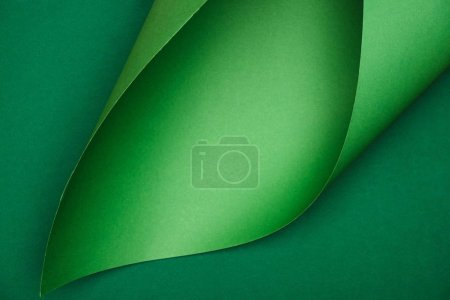 elevated view of green paper on colored background