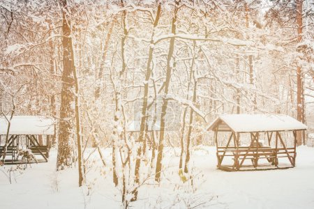 toned picture of alcoves in beautiful snowy winter forest