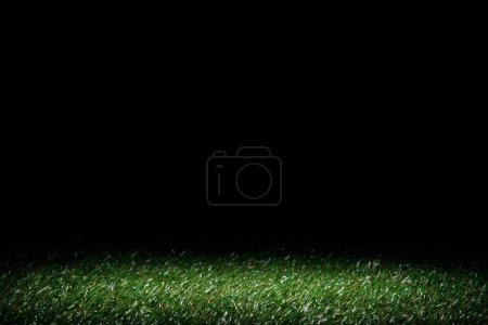 lawn with green grass on black, floral background
