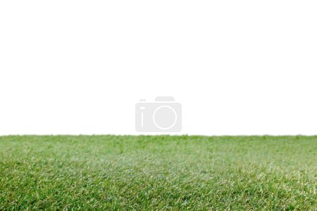 Photo for Lawn with green grass on white, floral background - Royalty Free Image