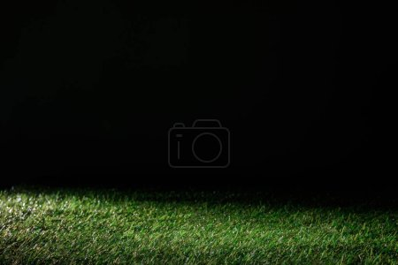 Photo for Football field with green grass on black, floral background - Royalty Free Image