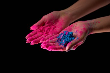cropped view of adult with hands in pink powder holding blue holi powder isolated on black